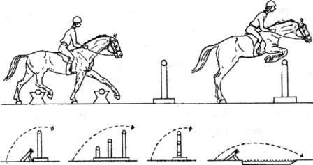 Напрыгивание лошадей. Заездка молодой лошади. Баланс лошади и всадника. Урок напрыгивания.